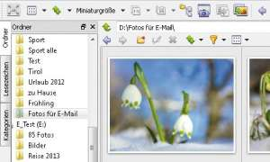 XnView MP, XnView.