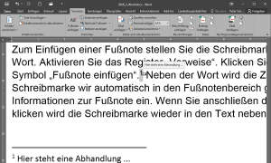 Screenshot: Fußnote