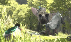 The Last Guardian im Test