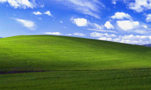 Screenshot: Windows XP