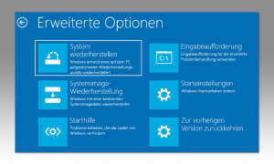 Erweiterte Problembehandlung Windows 10