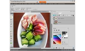 Corel Paint Shop Pro 2018 Ultimate Screenshot