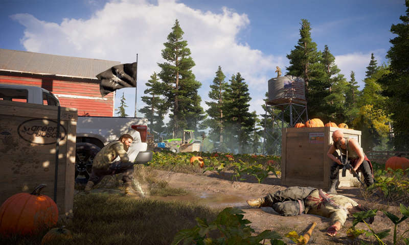 Far Cry 5 Im Test: Wahnsinn In Den USA