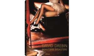 Beautiful Disasters - David Drebin