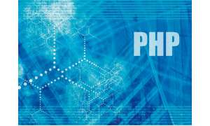 IT Professional Praxis Webseiten: Private Homepages mit HTML und PHP