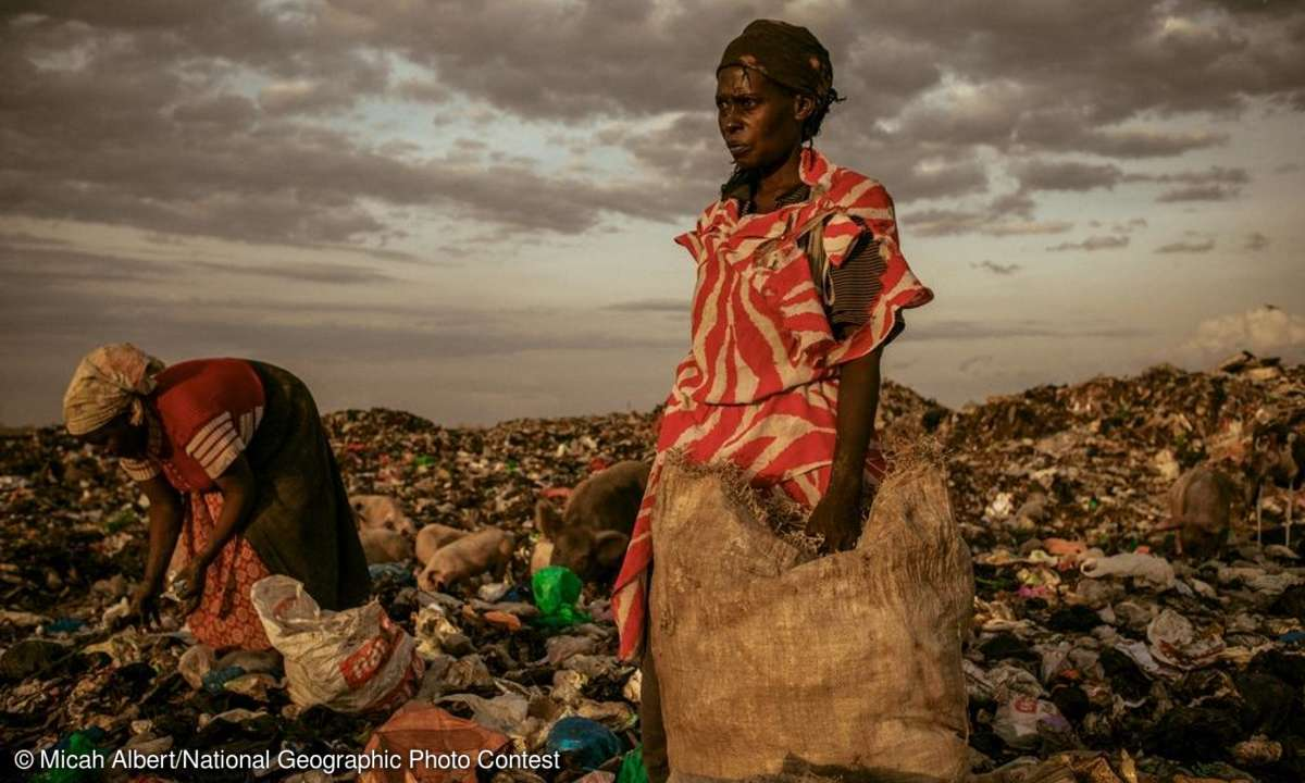 Amongst the Scavengers by Micah Albert/National Geographic Photo Contest
