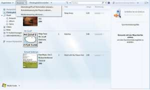 Windows Media Player - Plugins