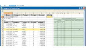 Software Excel: Excel-Datenbankfunktionen