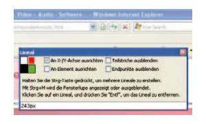 Einzeltest: Internet Explorer 8