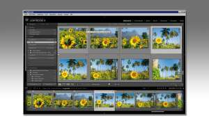 Adobe Lightroom Sammlung Stapel Ratgeber