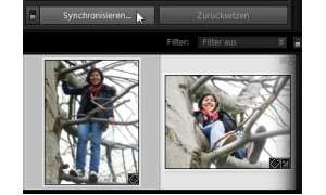 Adobe Photoshop Synchronisieren