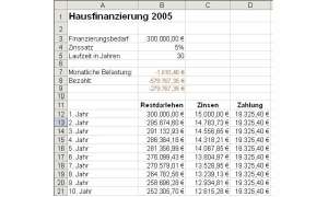 Zinsfunktionen in Excel