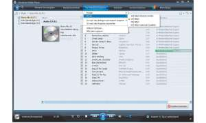 Windows Media Player 11 in der Praxis